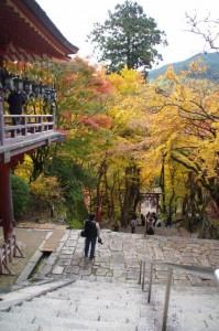 (23)手水舎前からの風景(談山神社)