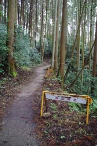 (27)三天稲荷神社への参道(談山神社)