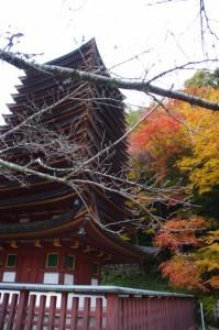 (6)十三重塔(談山神社)