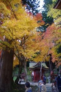 (5)権殿から(1)比叡神社へ(談山神社)