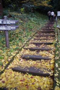 (32)御破裂山、談い山への登山口(談山神社)