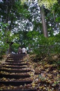 談い山への階段(談山神社)