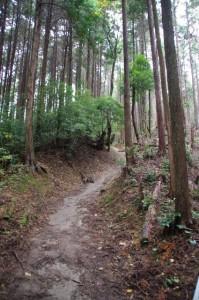 御破裂山、談い山の分岐から御破裂山へ(談山神社)