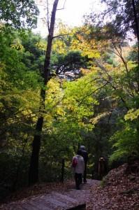 御破裂山、談い山からの下り(談山神社)