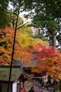 (1)比叡神社、(5)権殿(談山神社)