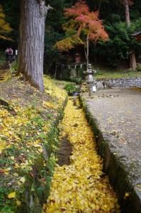 (18)竜神社(談山神社)