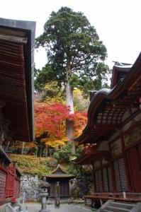(2)総社本殿、(3)閼伽井屋、(4)総社拝殿(談山神社)