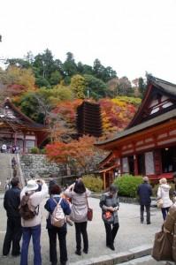けまりの庭からの風景(談山神社)