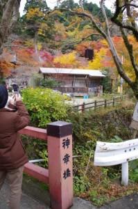 (31)神幸橋からの風景(談山神社)