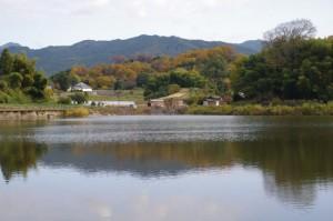 和田池(明日香村豊浦)