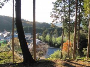 祠付近からの風景(坂本棚田)