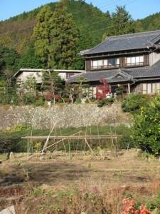 石垣(坂本棚田)