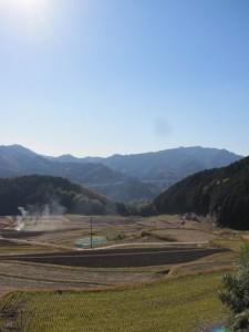 展望台からの風景(坂本棚田)