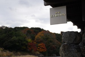 紅葉と「珈琲 五十鈴カフェ」の看板(五十鈴川左岸)