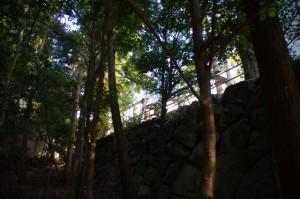 板垣(内宮御正宮 新御敷地)