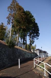 鹿海町公民館への坂道(伊勢市鹿海町)
