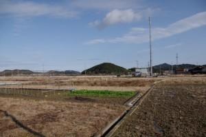 鹿海町公民館(伊勢市)付近から望む朝熊神社の社叢