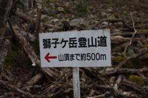 獅子ヶ岳登山道の道標(約500m)