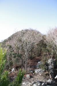 獅子岩付近から望む獅子ヶ岳