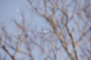 獅子ヶ岳山頂から見上げた飛行機#1