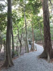 大津神社前から上御井神社遥拝へ(外宮)