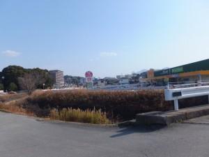 朝川橋(朝川)付近