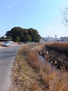 朝川橋(朝川)から田上大水神社へ