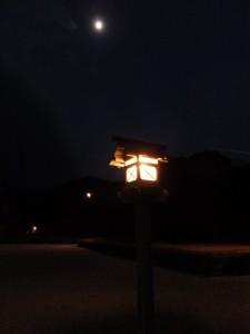 神苑付近(内宮)