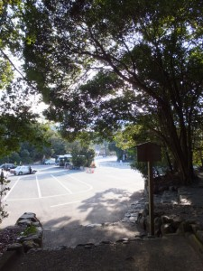 饗土橋姫神社の前から望む宇治橋前