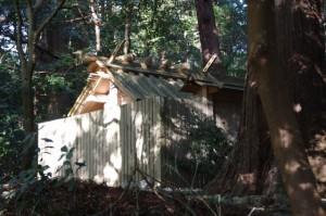 参道から垣間見えた多岐原神社