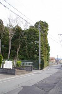 河原神社(毛理神社を同座)