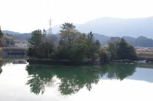 五十鈴川左岸から望む鏡宮神社の社叢
