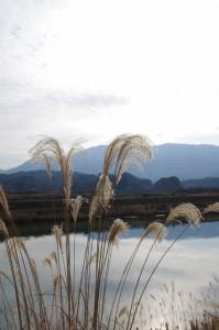堀割橋(五十鈴川)付近から望む朝熊山