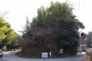 駐車場(であいの広場)、朝熊岳道の分岐