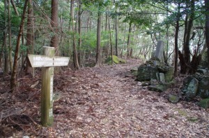 近畿自然歩道の道標(丸山道)
