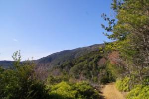 丸山道(金剛證寺~丸山庫蔵寺)からの風景