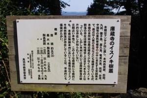 「庫蔵寺のイスノキ樹叢」の説明板