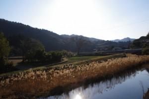 河内川(河内神社付近)