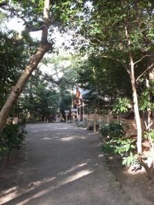 河原淵神社から船江上社へ続く参道