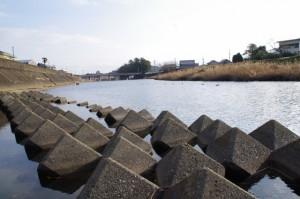 五十鈴川から上流側から望む大土御祖神社ほかの社叢