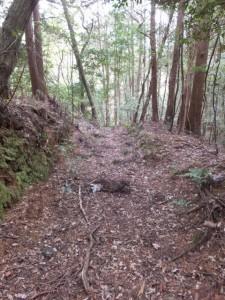 「家田地蔵尊 子安地蔵尊」から参道の反対側の山道へ