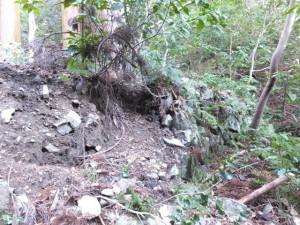 氷室洞くつ付近の崩れた石垣(玉城町山神)