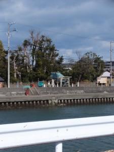 浜郷小学校記念公園付近から望む牟山中臣神社(伊勢市田尻町)