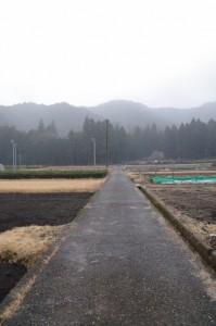 墓地への道路(度会町下久具)