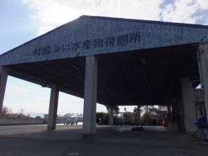 村松漁協水産物荷捌所(伊勢市村松町)