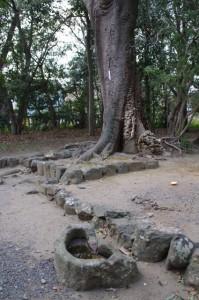清野井庭神社付近