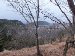 さくら園(音無山)からの眺望