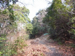 高松稲荷側登り口から音無山山頂へ向かう途中