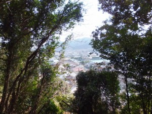 音無山園地から太江寺への途中から望む日の出橋