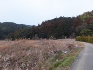 江神社付近